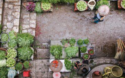 Street food Tour al mercato di Ortigia