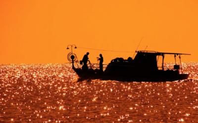 Giro in barca Riserva naturale Ciane